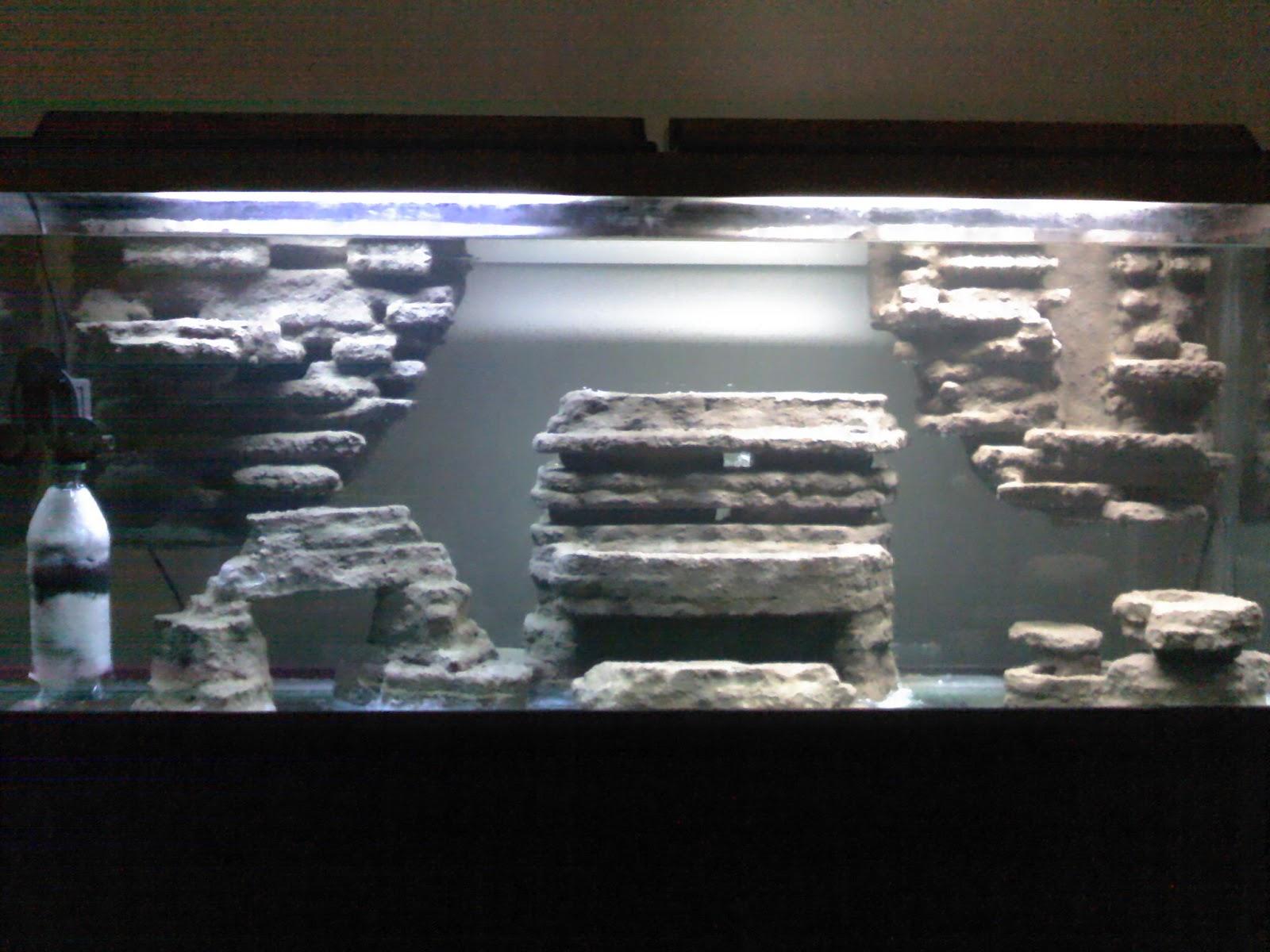 Unduh 7500 Background Aquarium Dengan Styrofoam Terbaik