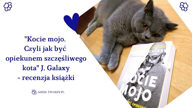 Kocie mojo. Czyli jak być opiekunem szczęśliwego kota. J.Galaxy - recenzja książki i moja opinia