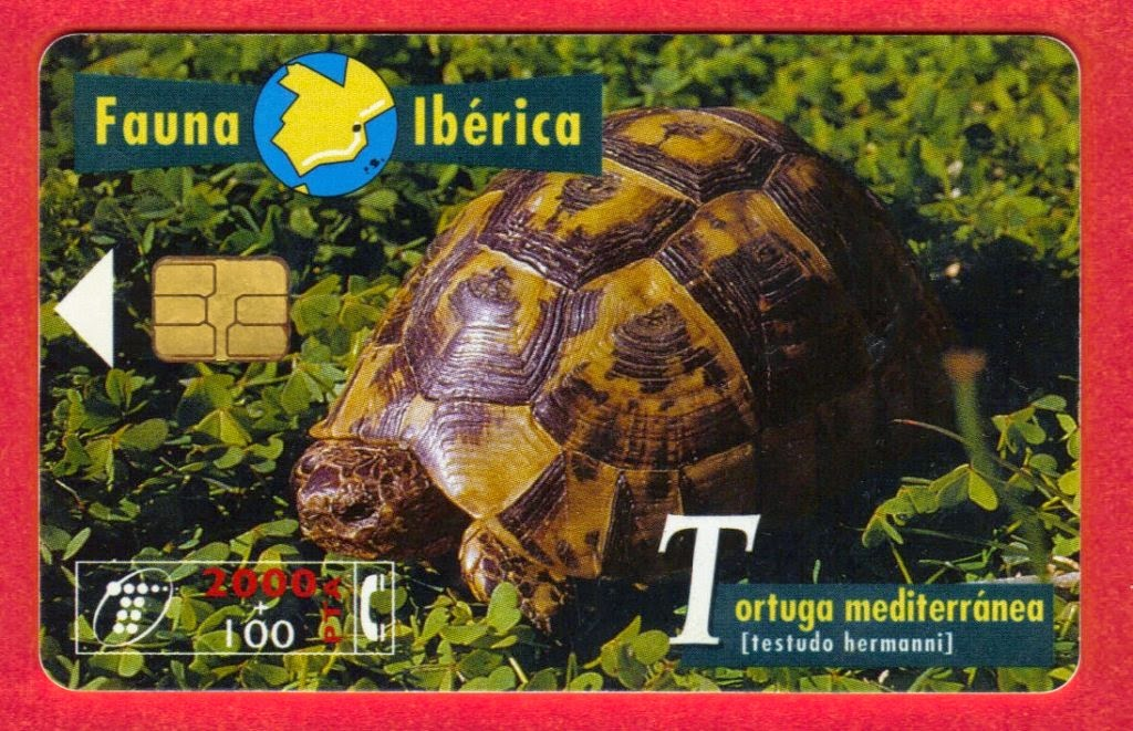 Tarjeta telefónica Tortuga mediterránea (Testudo hermanni)