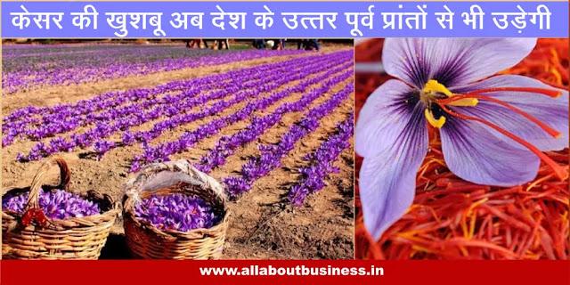 Innovatation-Saffron-bowl-of-India-extends-to-the-North-East-केसर-की-खुशबू-अब-सिक्किम-से-भी-उड़ेगी