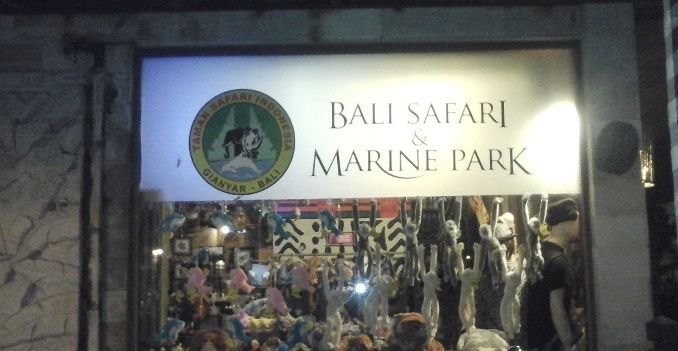 Purchase Souvenirs Meticulously - Bali, Holidays, Tours, Tips, Attractions, Zoo Park