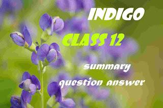indigo class 12 summary