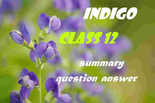 INDIGO Question-Answer | Summary Class 12 | Important Q