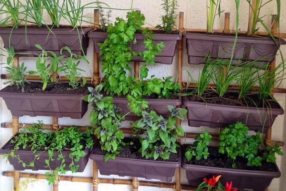 Horta Vertical / suspensa com floreira