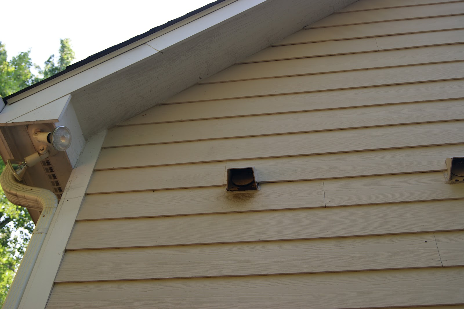 After The Baby Bats Grow Up And Can Fly Bat Man Will Put A Special Door On This Vent That Allow To Out But Not Back In