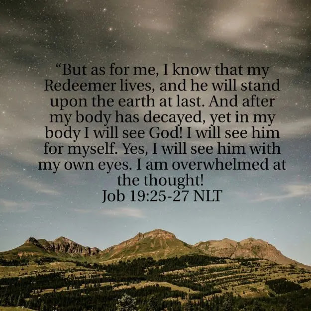 Bible Verses About Life And Death But as for me, I know that my Redeemer lives, and he will stand upon the earth at last.  And after my body has decayed, yet in my body I will see God! I will see him for myself. Yes, I will see him with my own eyes. I am overwhelmed at the thought! - Job 19:25-27