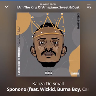 "Kabza De Small – ""Sponono"" ft. Wizkid, Burna Boy, Cassper Nyovest,"