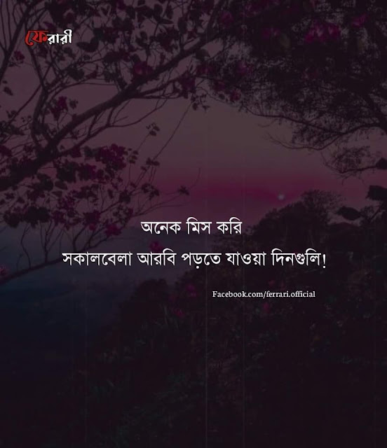 bangla frined caption pics