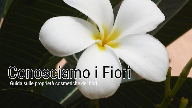 uso cosmetico dei fiori
