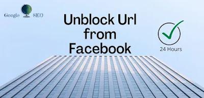 Unblock website url on Facebook
