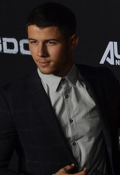 ¿Nick Jonas podría divorciarse? ¡Últimos rumores!