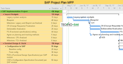 SAP Project Plan Template in MS Project