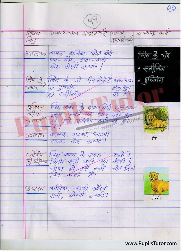 Hindi ki Mega Teaching Aur Real School Teaching and Practice Path Yojana ling aur ling ke bhed kaksha 3 se 8 tak  k liye