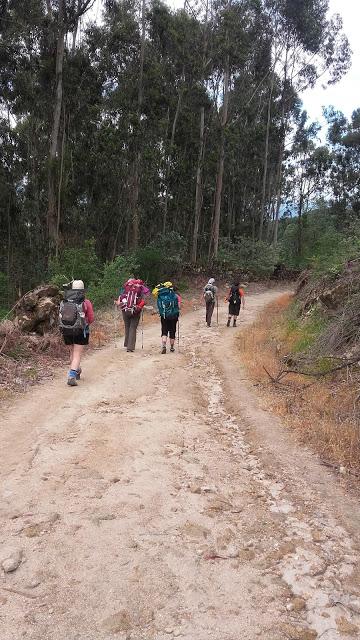 peregrinos no Caminho de Santiago de Compostela