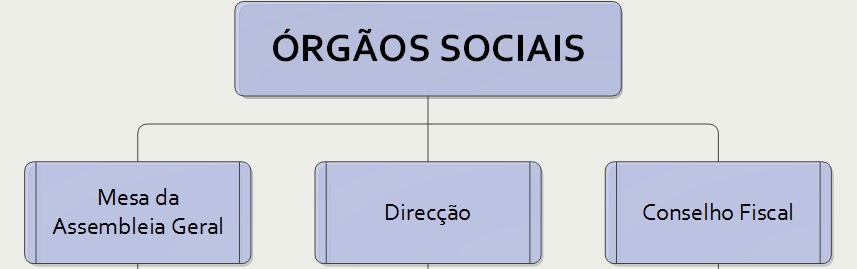 Image result for orgãos sociais
