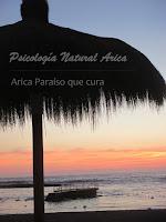 Dirección: Arica, Arica y Parinacota,Psicólogo en Arica (Asesoría Psicología Natural Arica (HIPNOSIS Y COACHING))