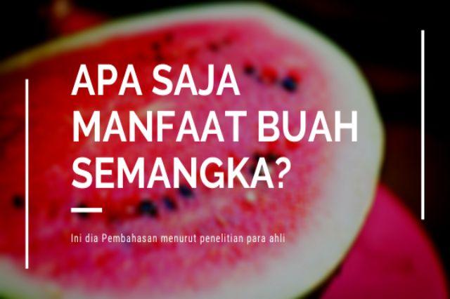 apa saja khasiat buah semangka