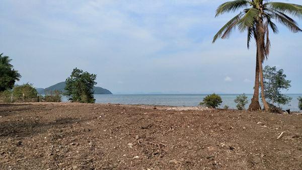 VR Global Property ที่ดินริมทะเลติดหาดสมุย 6 ไร่ 3 งาน 87 ตรว เกาะสมุย สุราษฎร์ธานี