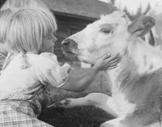 Tyttö ja lehmä.