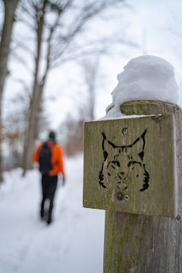 Winterwandern in Bad Harzburg | Kleiner und Großer Burgberg und Besinnungsweg | Baumschwebebahn | Wandern im Harz 16