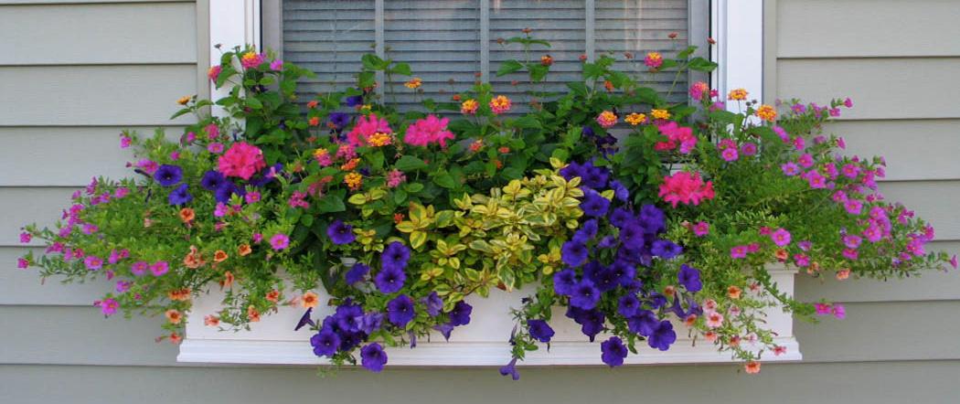 Tudo Pra Casa Ideias Criativas Jardineiras Na Janela Um