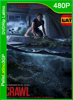 Crawl (Infierno en la tormenta) (2019) | DVDRip Latino HD GoogleDrive 1 Link