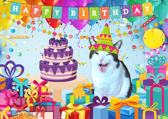 Melvyn's 4th Birthday Pawty Pawtrait  ©BionicBasil®