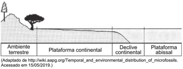 Em um estudo, foram avaliadas quatro amostras encontradas em diferentes locais, representados na figura abaixo