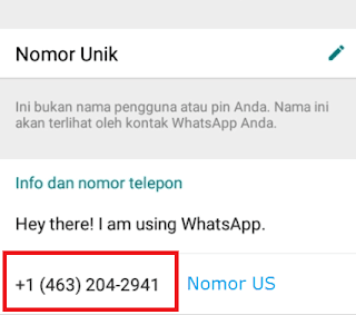 Cara Daftar Whatsapp Pakai Nomor Luar Negeri