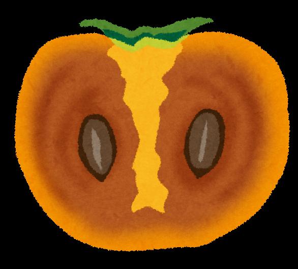 柿の断面のイラスト かわいいフリー素材集 いらすとや