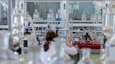 Crean El Primer Embrión Sintético A Partir De Una Célula
