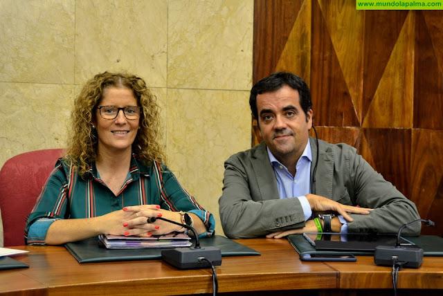 Cabildo y Gobierno de Canarias apuestan por crear un frente común con  el sector empresarial en beneficio del comercio insular