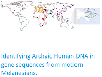 https://sciencythoughts.blogspot.com/2016/03/identifying-archaic-human-dna-in-gene.html