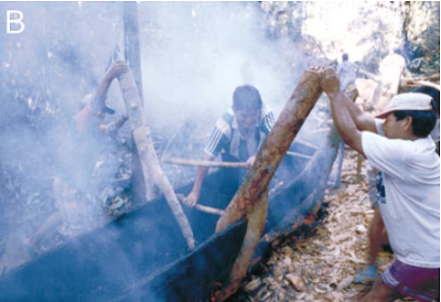 Maijuna boatbuilders expanding a logboat with fire (Gilmore et al., 2002:24)