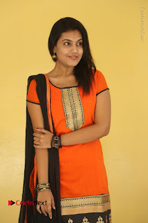 Telugu Actress Chandana Stills in Salwar Kameez at Karam Dosa Movie Press Meet  0016.JPG