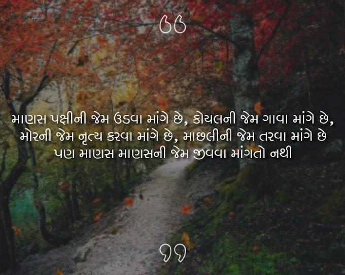 Best unlimited Gujarati Shayari no khajano | Gujarati shayri no khajano