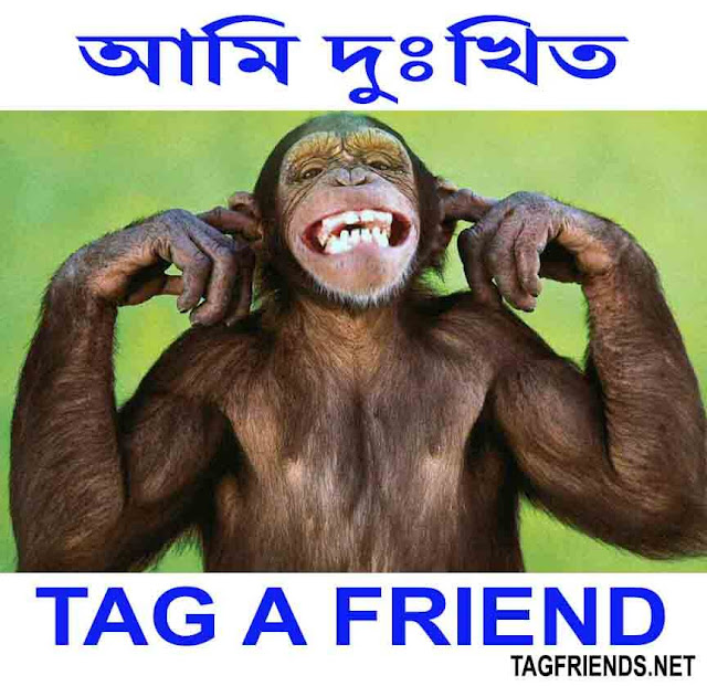 How To Say I Am Sorry! In BENGALI Language