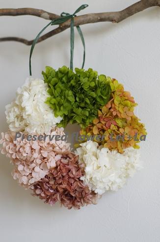 http://leila365.shop-pro.jp/?pid=122638357