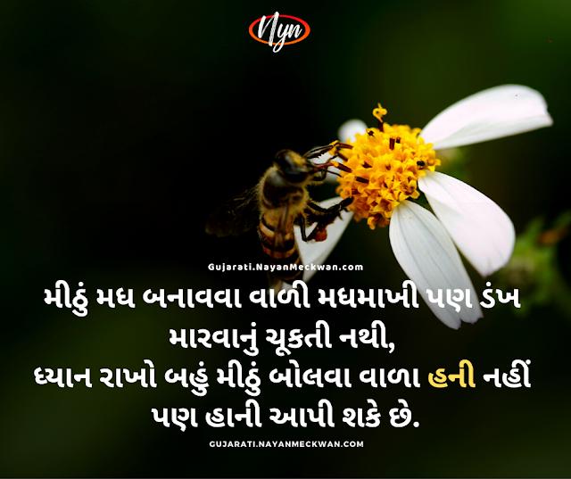 Honey nai Hani Gujarati quotes whatsapp status