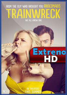 Esta Chica es un Desastre (2015) | DVDRip Latino HD Mega 1 Link