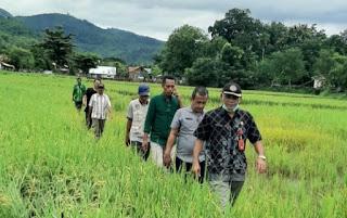 Kadis Pertanian Kota Bima Tinjau Lokasi Terdampak Banjir