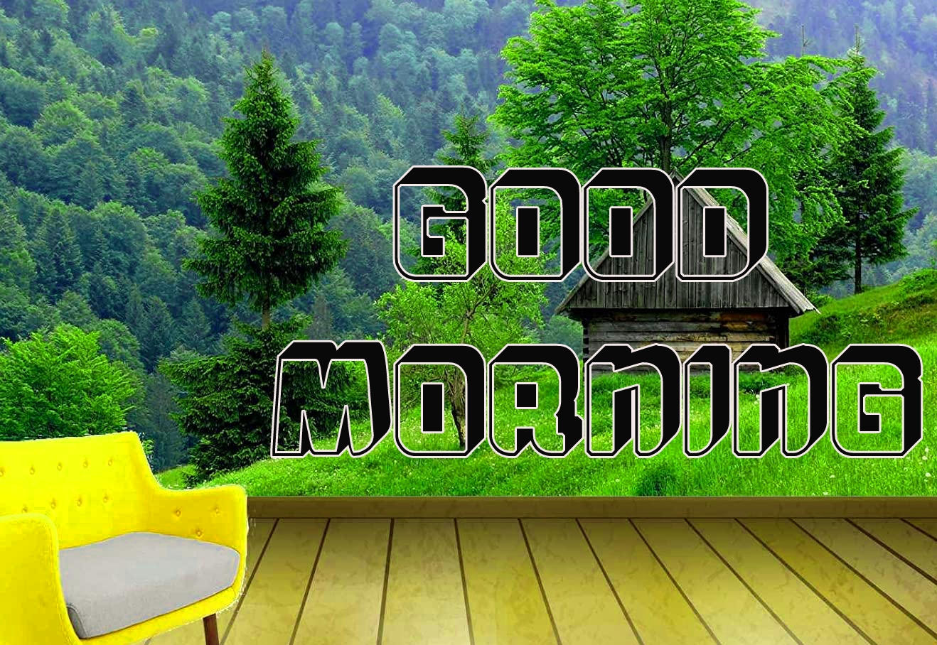 good morning real images