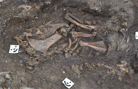 Ruínas de Barco Viking revelam esqueletos de homem, cavalo e cachorro - Img1