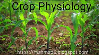 crop physiology,https://mahmad6.blogspot.com
