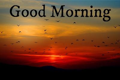 Download of Good Morning Image
