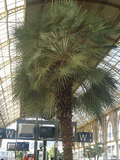 Travel Nice Station France