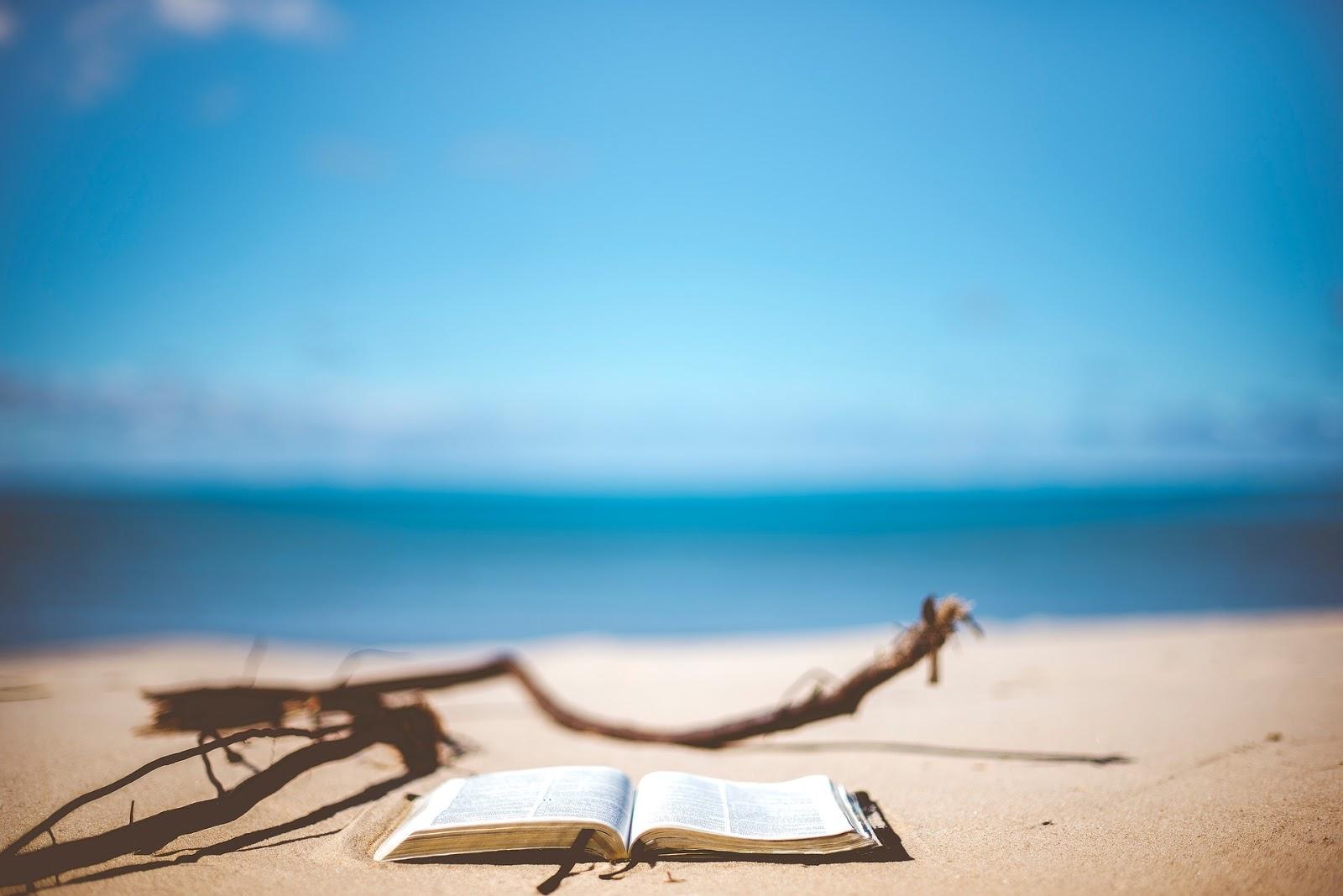 5 libri per l'estate 2019