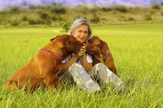 أكبر 10 سلالات الكلاب في العالم