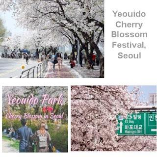 Yeouido Cherry Blossom Festival di Seoul