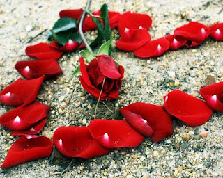 صور قلوب رائعة رومانسية جميلة